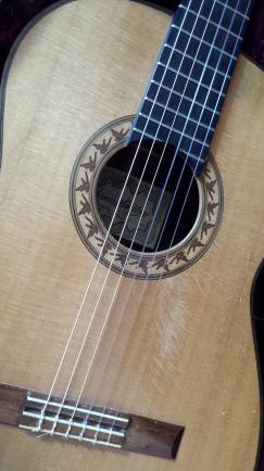 Guitar H